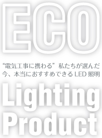 ECO Lighting Product